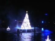 ⑧カラー・オブ・クリスマス-09.1